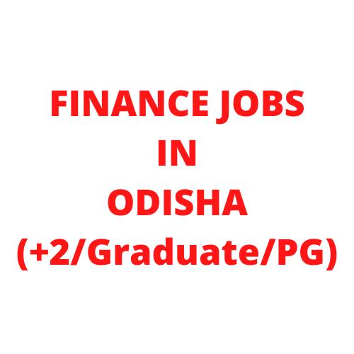 Finance jobs in Odisha
