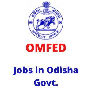 Contractual job in Odisha govt