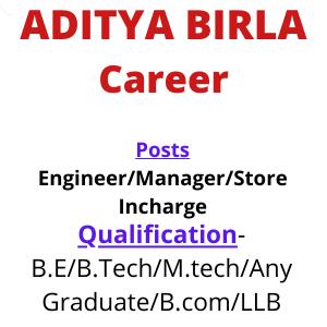 Aditya Birla career